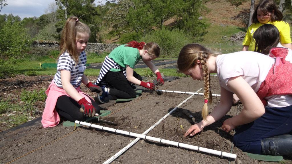 Kilchuimen Primary pupils dig in to nature
