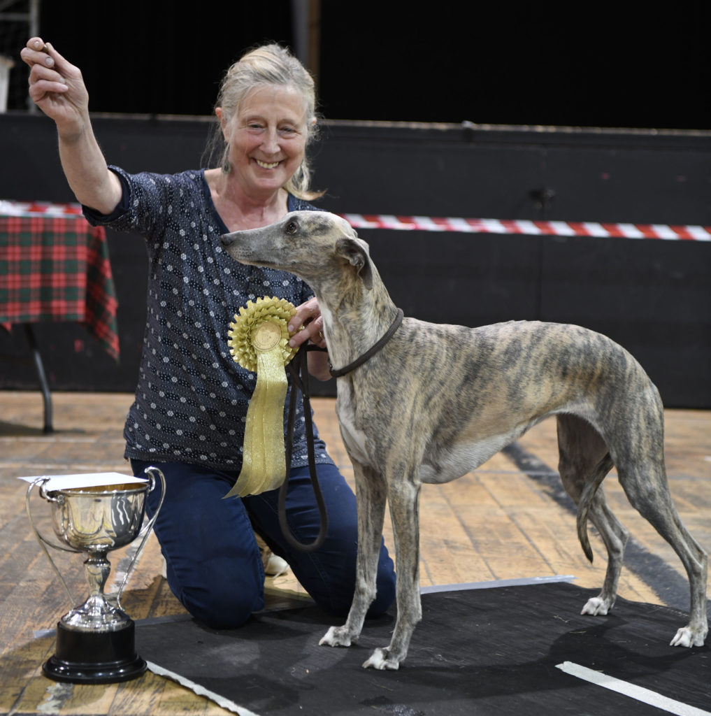 Dogs galore at Nevis Centre for fun dog show
