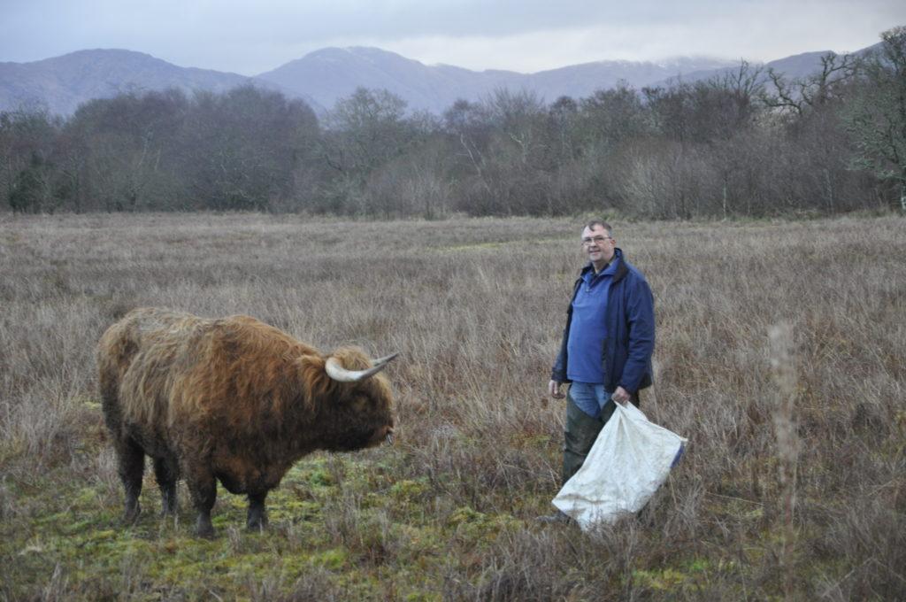 Highlanders head for Oban
