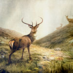 Deer from a painting by V R Balfour-Browne, one of the finest painters of deer in the world. (The Balfour-Browne estate)