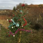 The Christmas tree on the road our of Oban.