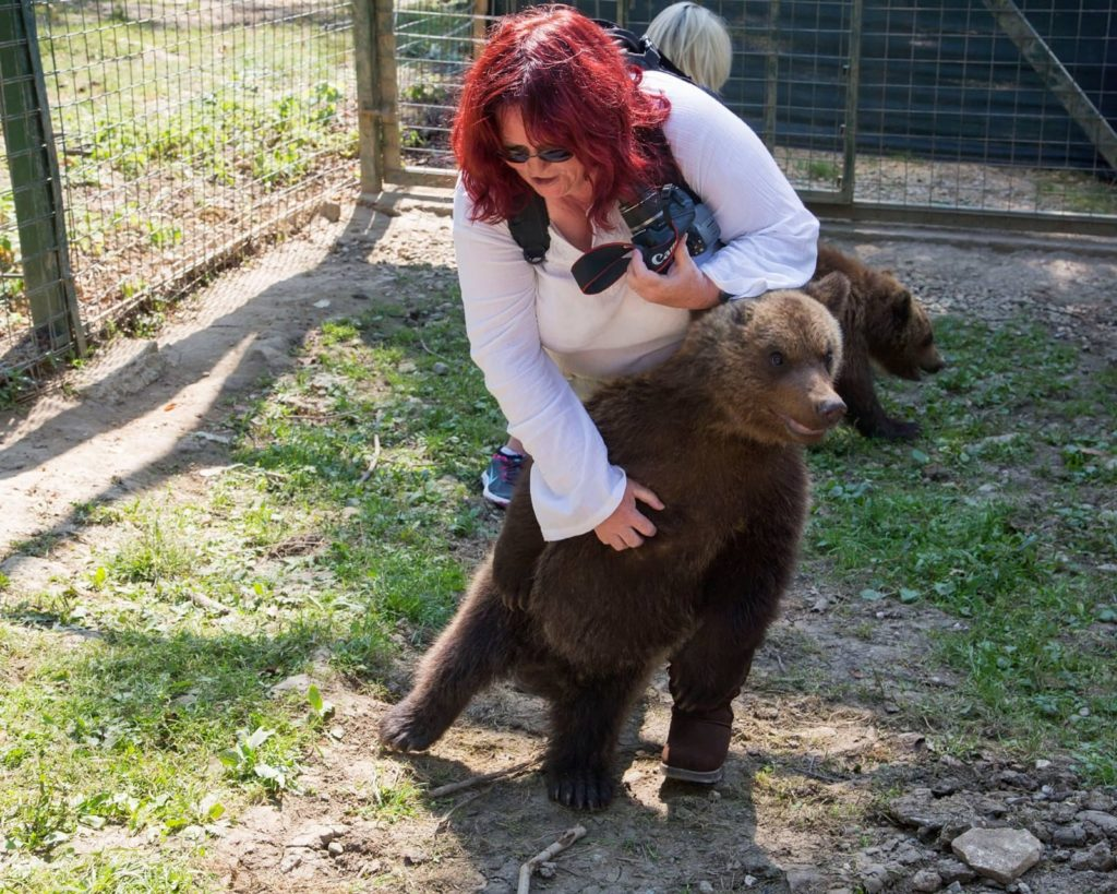 Bears are necessities of life for Acharacle's Lynn