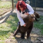 Lynn with a rescue bear cub at a sanctuary. NO F03 Lynn and Bears 01