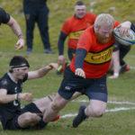 A flying try from Callum Maclachlan. Photograph: Iain Ferguson, alba.photos NO F12 Rugby v Cumbernauld 05