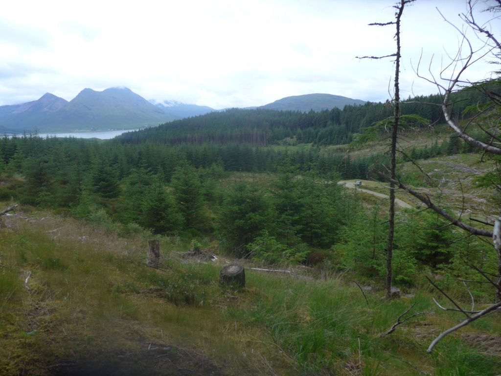 Near the scheme's top intake on Raasay. NO F23 RasaayNearTopIntakeDowntoVillage (002)