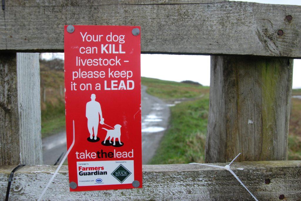 Sheep worrying warning sign.