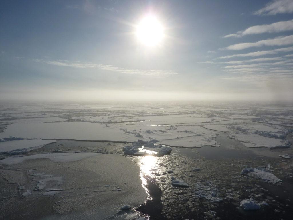 Body clocks keep ticking in the high Arctic Ocean