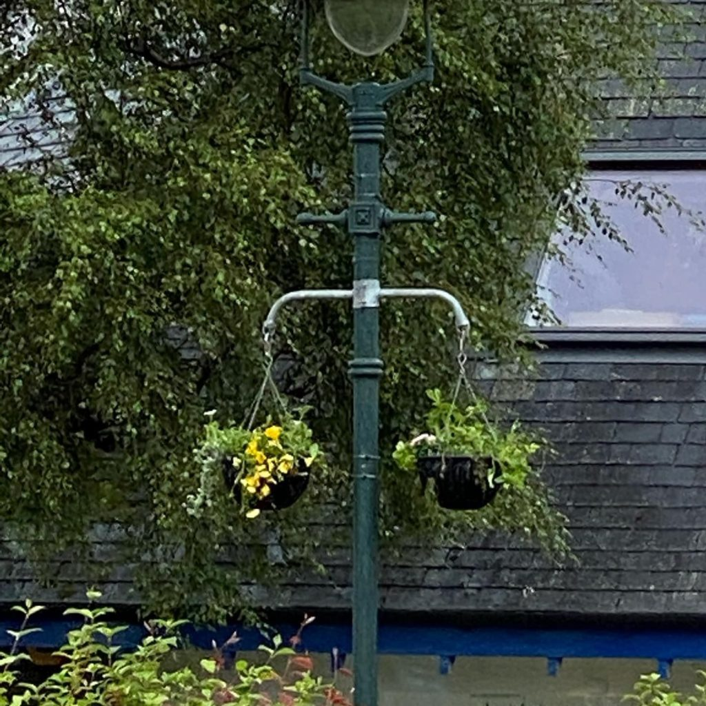 Some of the new hanging baskets in Fort William. NO F28 town team baskets