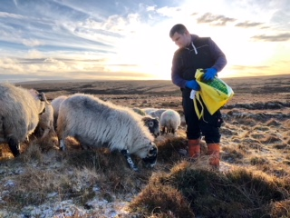 Young crofters gather  to share and inspire