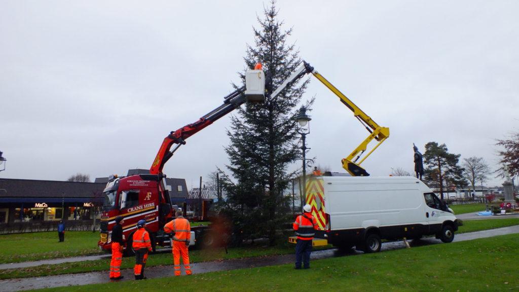 Tree sheds light on Parade thanks to some festive spirit