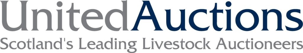 United Auctions logo