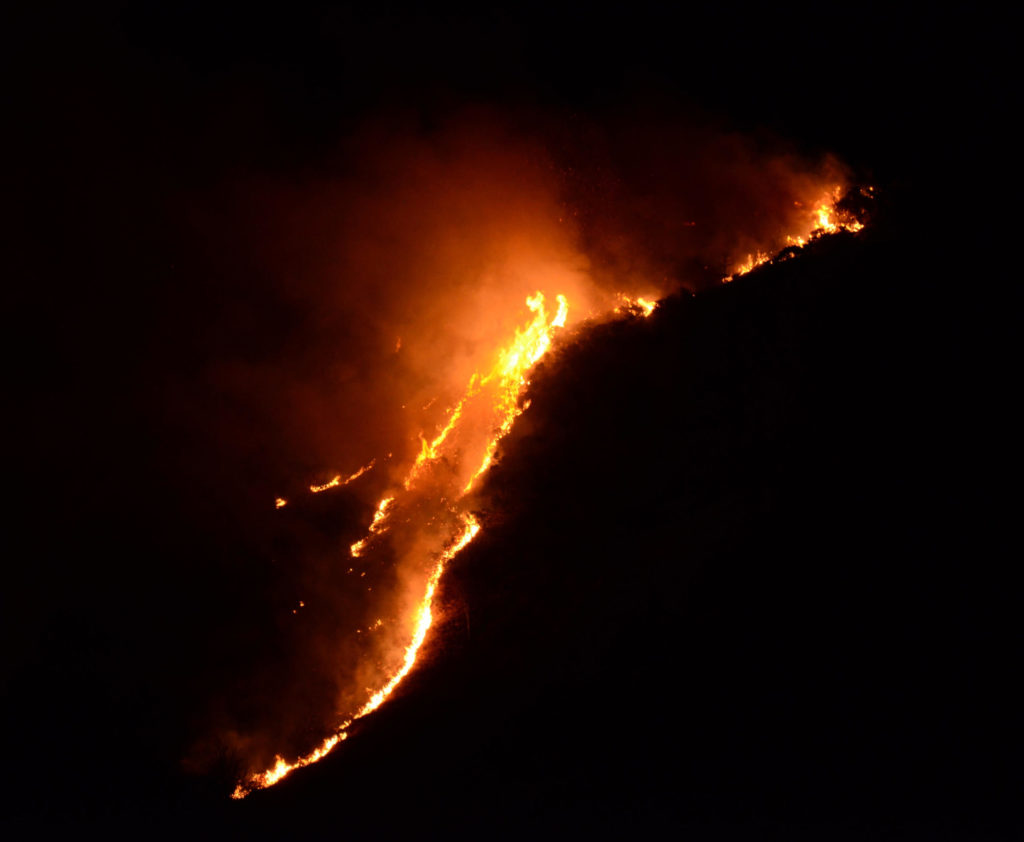 Firefighters tackle raging wildfire throughout the night