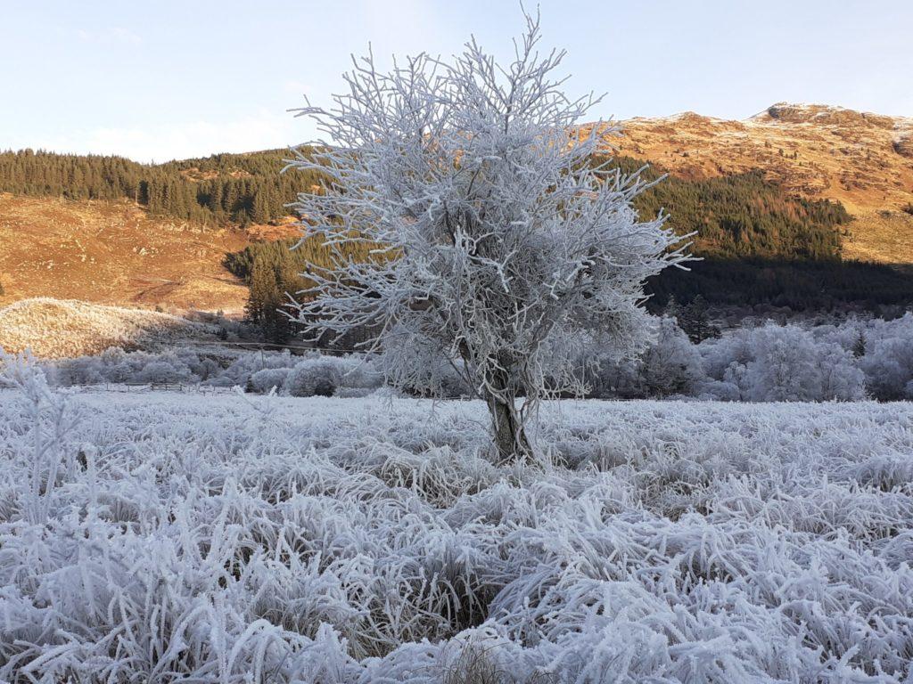 Beth Jackson's winning photograph of a winter scene. NO F18 - Winter by photographer Beth Jackson 2