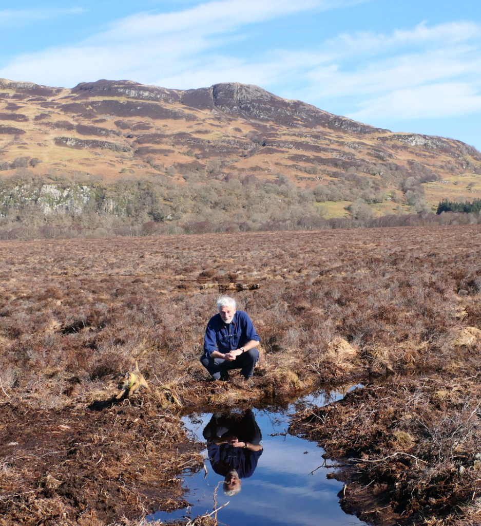 Superhero peat bogs – all you need to know