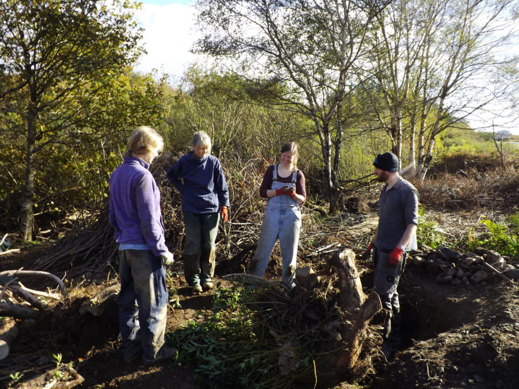 Dig this! Community garden project worker wanted