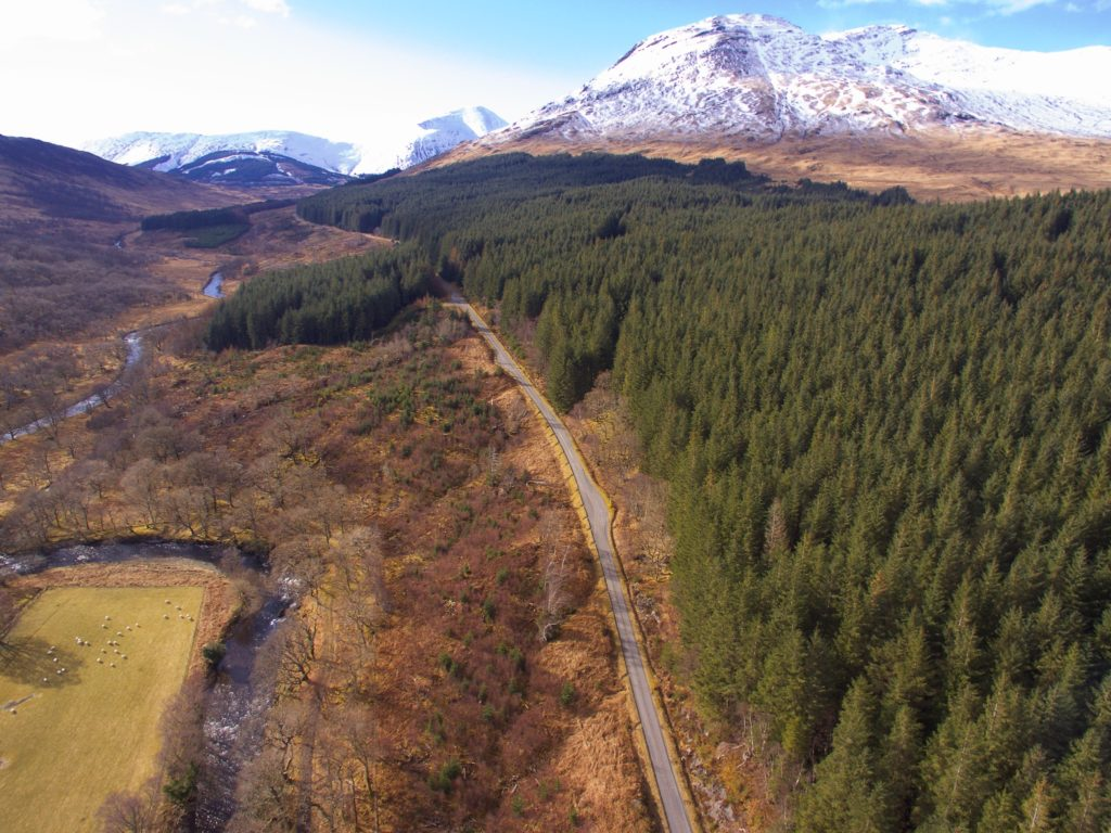 Ardura Forest on Mull will be bought by Mull and Iona Community Trust.