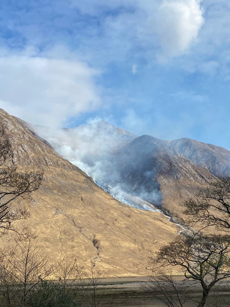 Appeal for information on hill fire