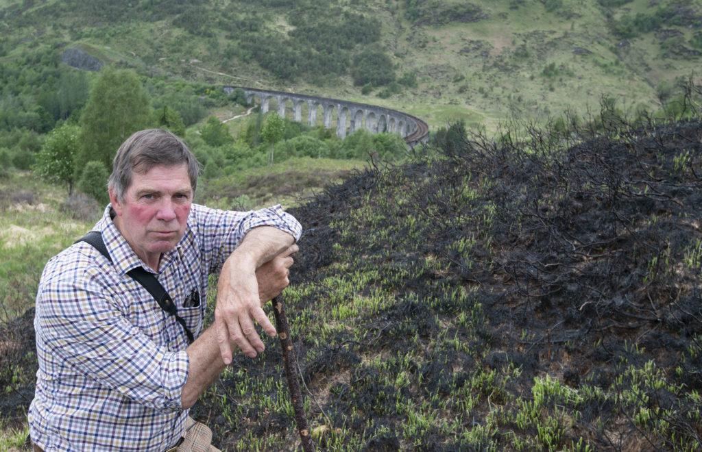 Glenfinnan Estate manager Alistair Gibson stands amid the blackened trees and ground after the recent wild fire, with Glenfinnan Viaduct in the background. Photograph: Iain Ferguson, alba.photos NO F24 vGlenfinnan fires 03