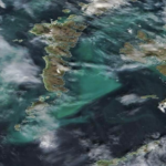 The large blue-green algae bloom which has developed in the Minch and is being monitored by the Scottish Environmental Protection Agency. Photograph: SEPA. No_F24bloom01