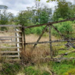 Local walker Jenny Kime is confronted with one of the locked gates on Ardnamurchan Estate at the centre of a row over public access. NO F27 Ardnamurchan locked gate 01