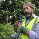 Keep Oban Beautiful chairman Maurice Wilkins wants rid of invasive Himalayan Balsam along the Black Lynn 16_T31_mauricewilkinsbashingbalsam