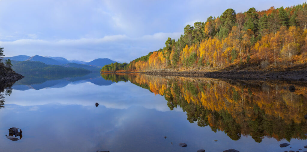 Project launched to rewild half a million acres of Western Highlands