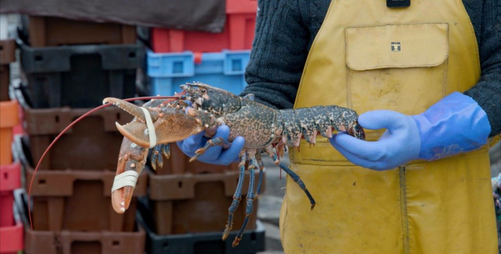 Mull and Iona step up to plate to promote local seafood