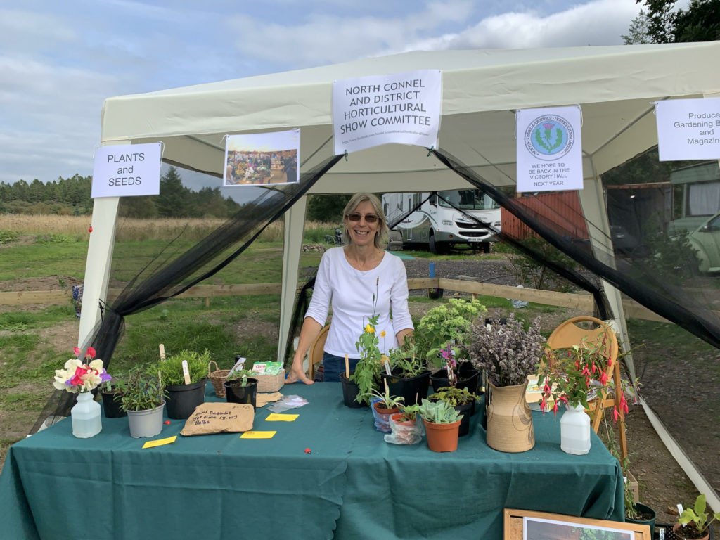 Horticultural show will be back