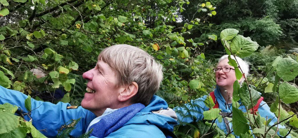 Helpers seed woodland future