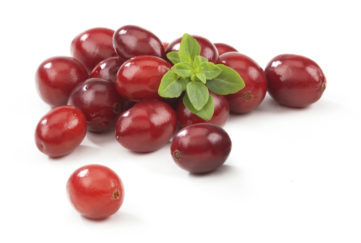 Cranberries with Leafs. The file includes a excellent clipping path, so it's easy to work with these professionally retouched high quality image. Thank you for checking it out! Cranberries