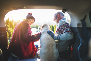 pension jargon buster