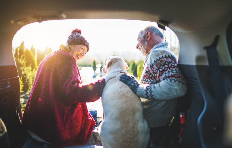 pension jargon buster