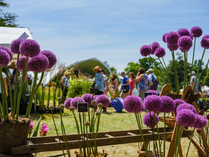 garden shows