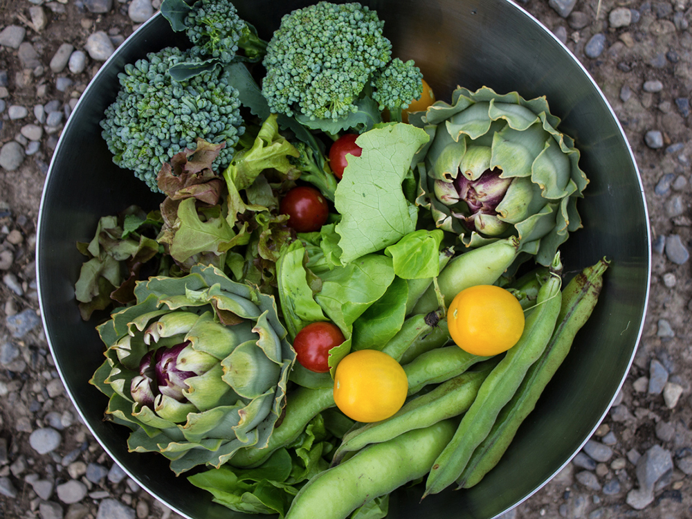 Daily Dozen: fruits and vegetables are an obvious way to give your body the fuel it needs