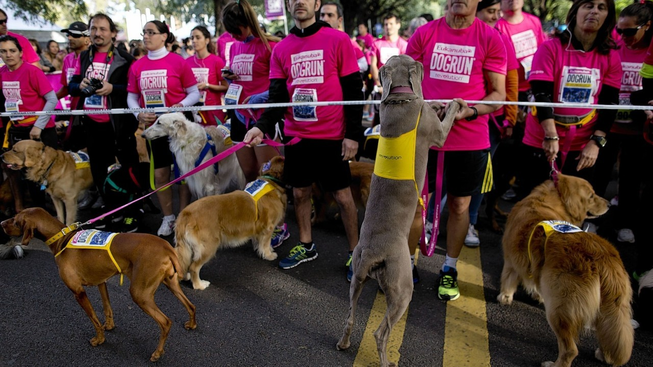 Owners with their dogs compete in the 5th edition of the annual Argentina dog run in Buenos Aires