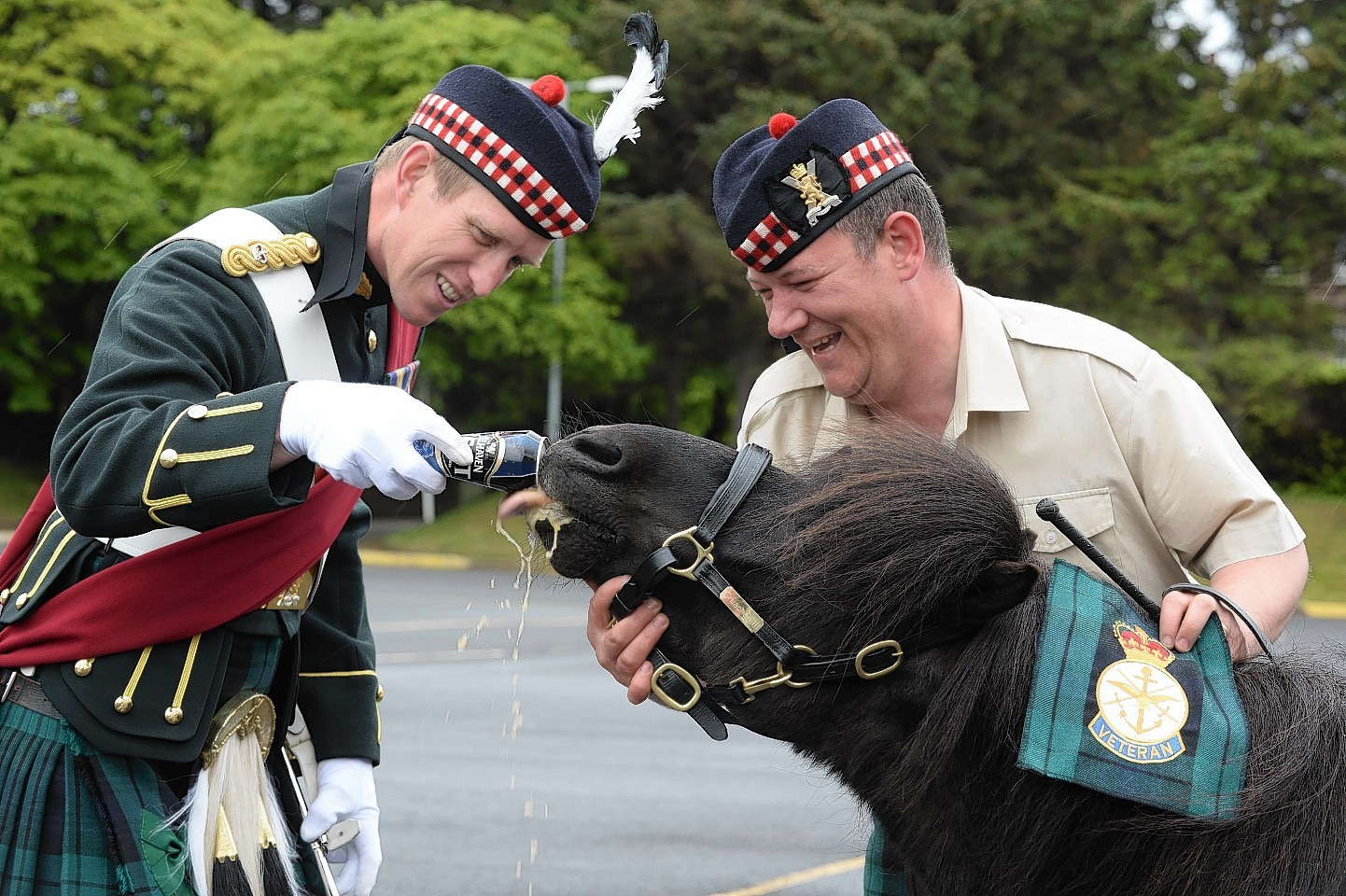 Major Oliver Dobson (L) and Pony Major Corporal Mark Wilkinson give Cruachan III a well deserved treat, a can of his favourite beer after the  presentation in Edinburgh