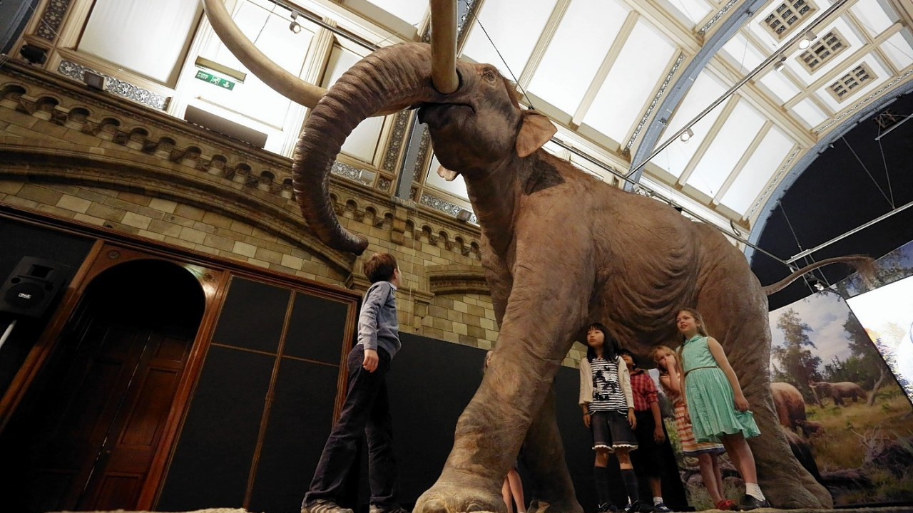 Children look at a Columbian Mammoth  in the Mammoths: Ice Age Giants exhibition at the National History Museum in central London