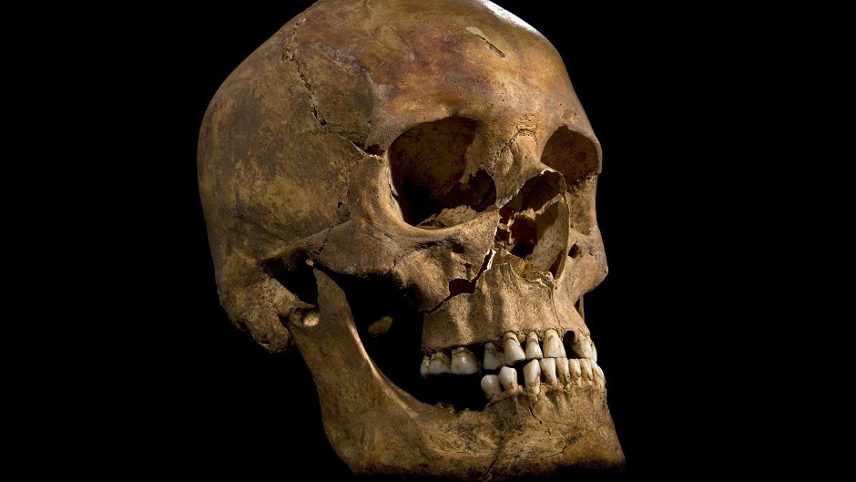 A human skull (not the one found in Torry)