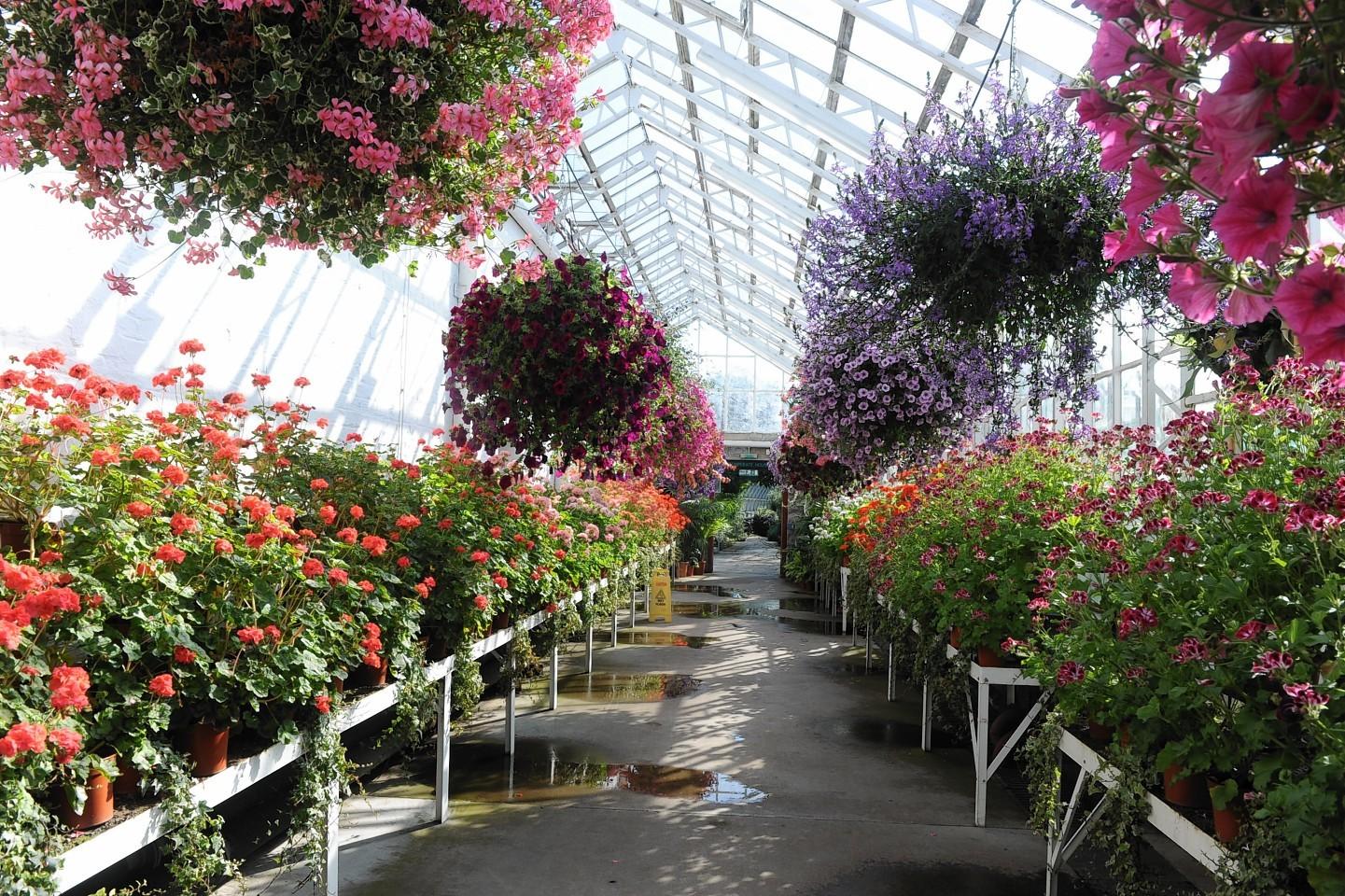 Winter Gardens in Duthie Park