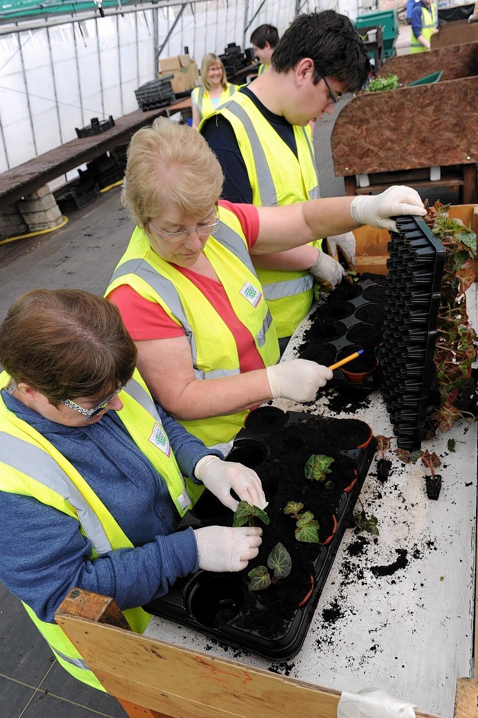 Gardeners set to work at the new Elgin garden