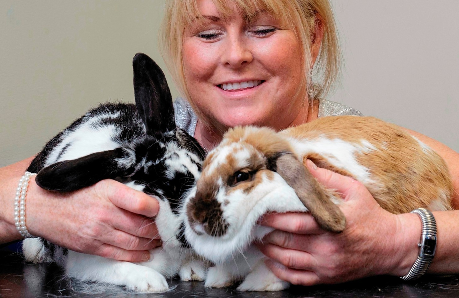 Rabbits Poppy and Joey, owned by Donna Manson,