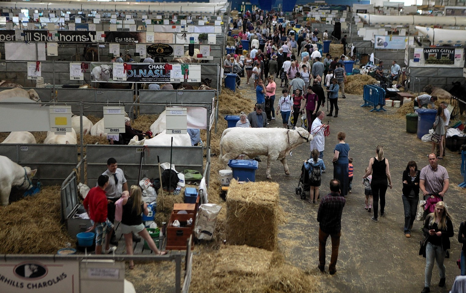 This year's Royal Highland Show