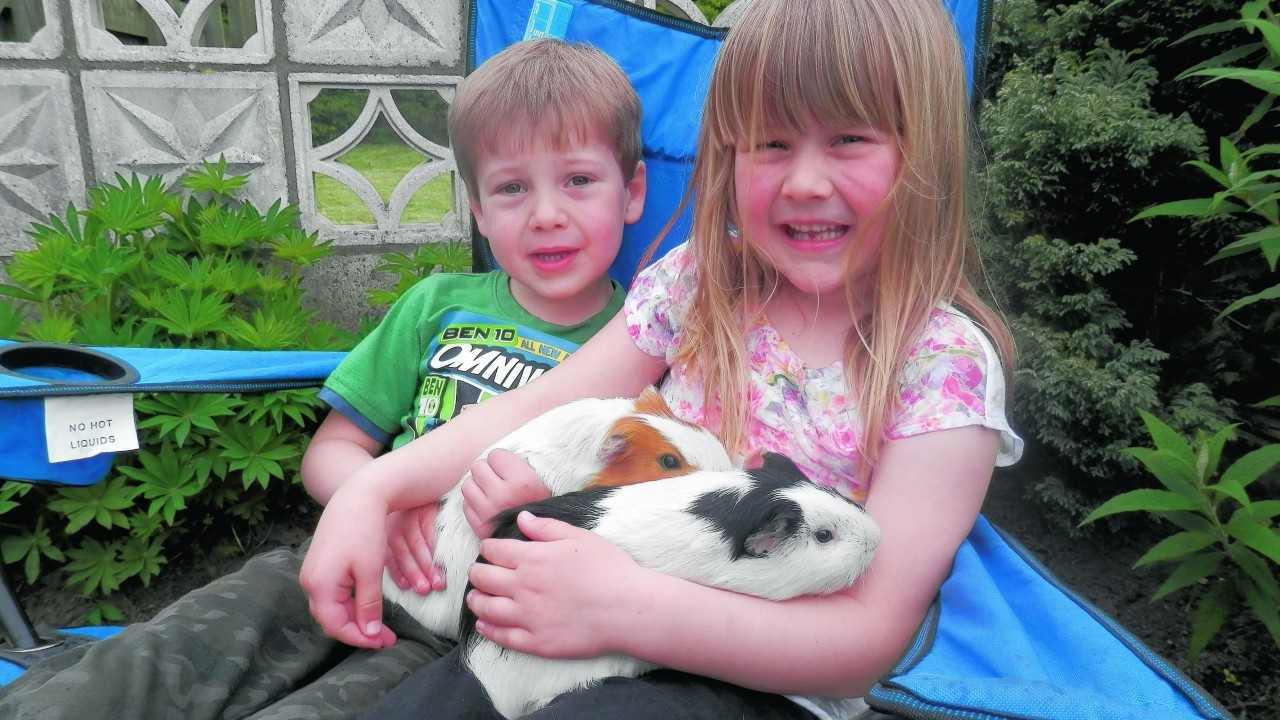 Patch and Squeak belong to Emily and Matthew and they all live in Inverurie.