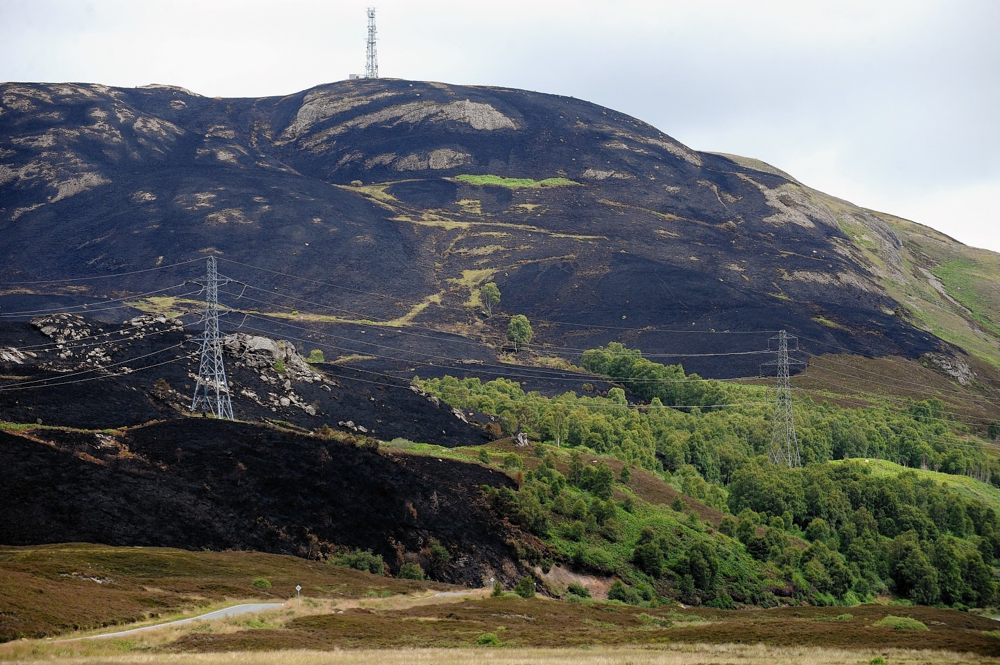 The charred hillside following the wildfire near Loch Ness