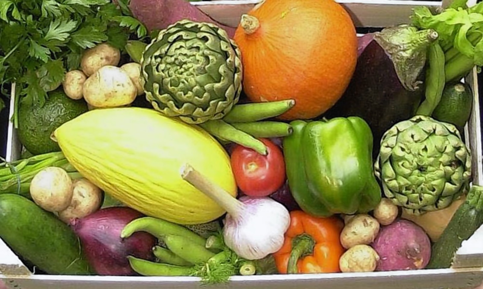 Government is being urged to give more support to organics