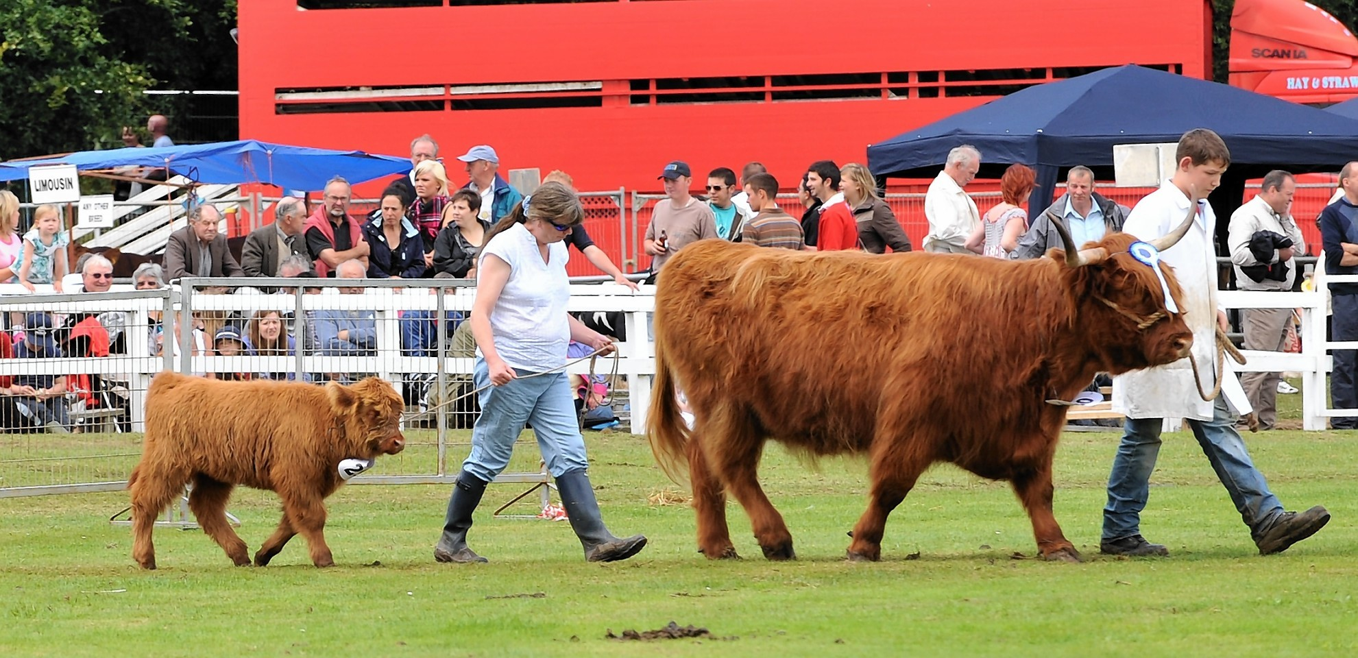 This year marks the 150th anniversary of the Turriff Show