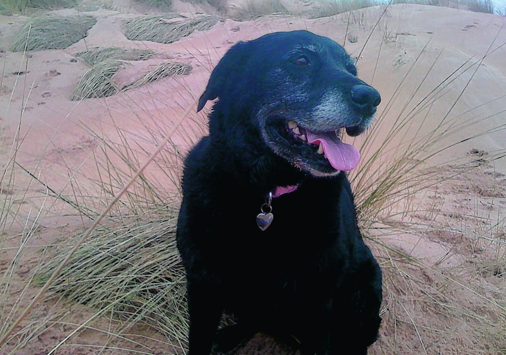 Relaxing on the beach is Jess, who lives with Andrew, Caroline, Jason and Daniel in Fraserburgh.