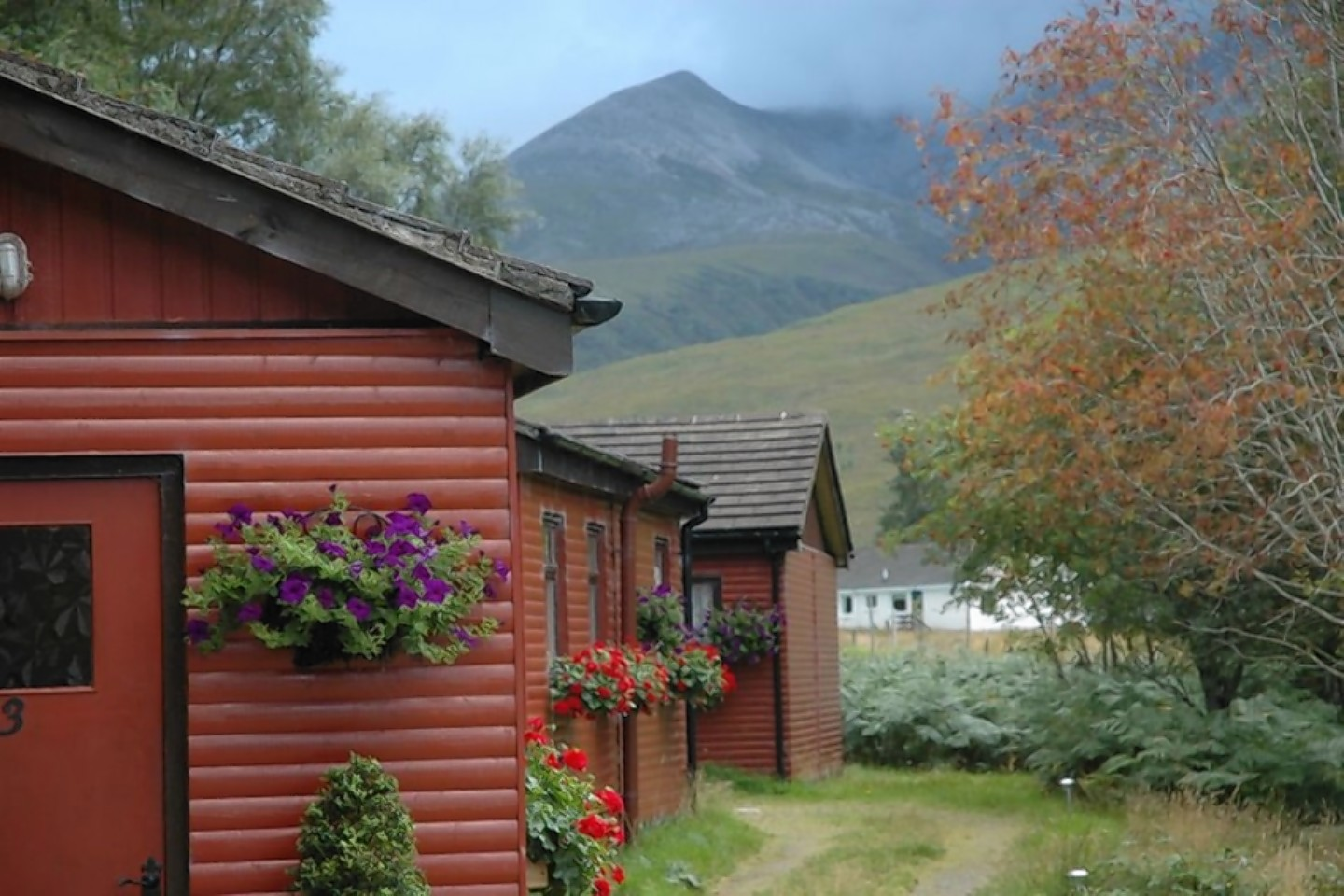Lodges at Kinlochewe