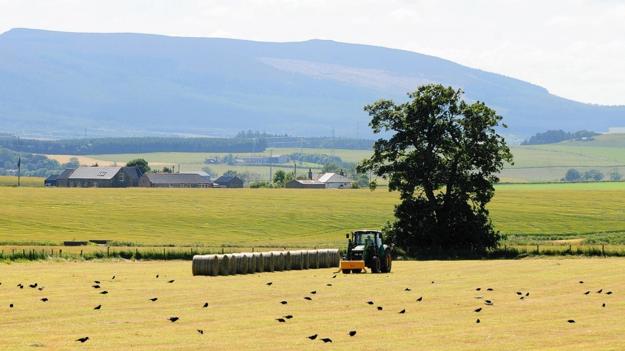 NFU Scotland says more detail is needed on EFA requirements under the new Cap