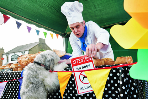 Pudsey getting up to mischief in his new film